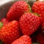 大谷亮平オススメ「イチゴの風呂敷餅」はネット通販で購入できるのか?お店の場所や購入方法【行列のできる法律相談所】
