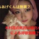 木村花の死因は硫化水素による呼吸困難?愛猫(からあげくん)の居場所は?