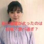 新川優愛が太った理由は妊娠?大食い?ロケバス運転手との結婚で幸せ太り?