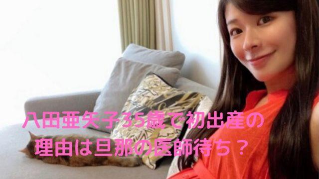 八田亜矢子35歳初出産の理由旦那寺口潤の写真