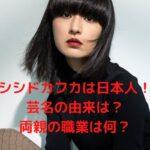 シシドカフカは日本人!親の仕事(職業)で海外に!両親は何してる?
