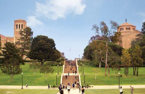 野村沙亜也の学歴通っていた大学はピアス大学